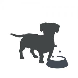 Veterinarinės dietos šunims