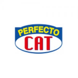 Perfecto cat