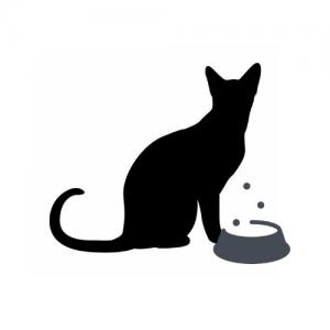 Veterinarinės dietos katėms